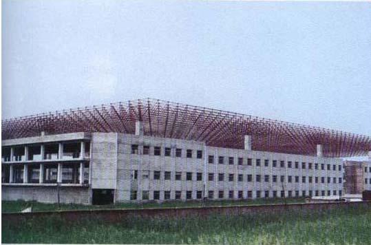 天津东方夏威夷网架工程(28000平方)